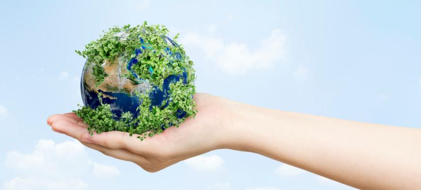 Устойчивост на практика: икономика, околна среда иобщество